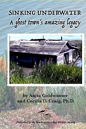 Sinking Underwater: A Ghost Town's Amazing Legacy by Anita Goldwasser and Cecilia D. Craig, Ph. D.